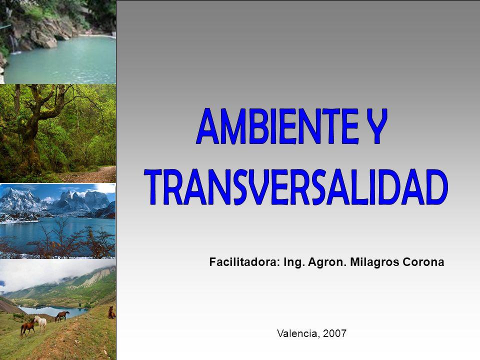 Facilitadora: Ing. Agron. Milagros Corona Valencia, 2007