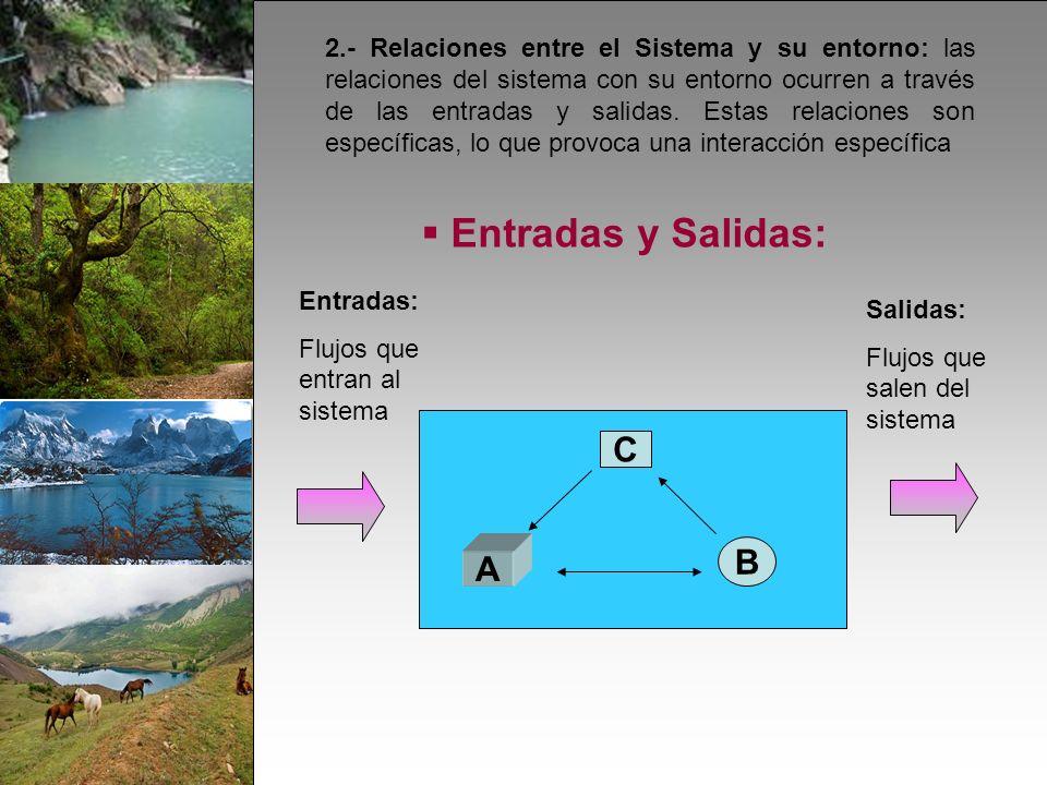 2.- Relaciones entre el Sistema y su entorno: las relaciones del sistema con su entorno ocurren a través de las entradas y salidas.