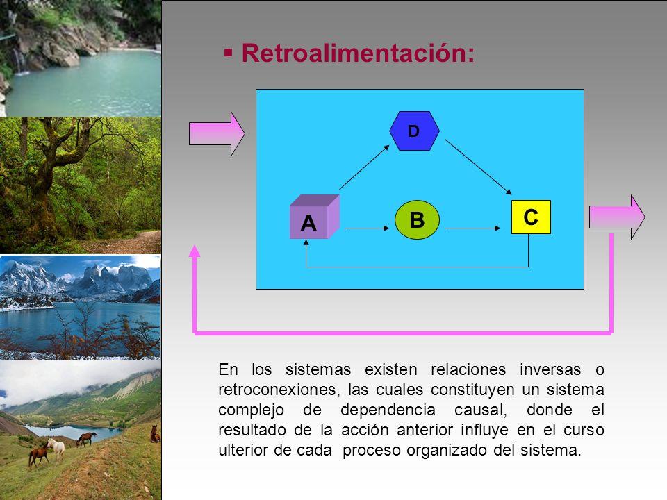 Retroalimentación: C A B D En los sistemas existen relaciones inversas o retroconexiones, las cuales constituyen un sistema complejo de dependencia causal, donde el resultado de la acción anterior influye en el curso ulterior de cada proceso organizado del sistema.