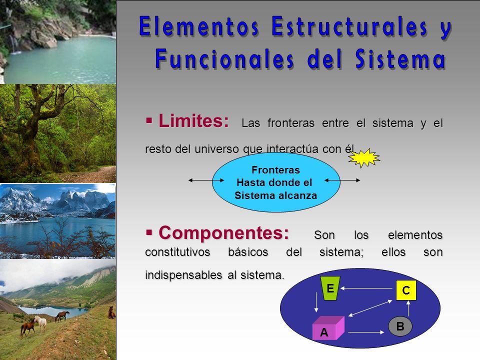 Limites: Las fronteras entre el sistema y el resto del universo que interactúa con él.