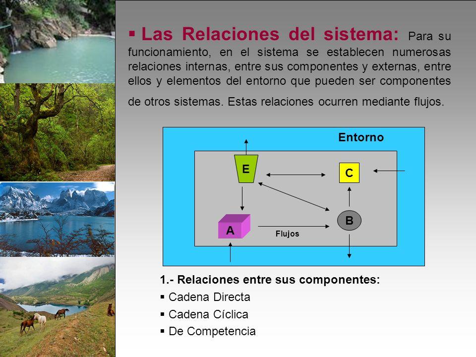 Las Relaciones del sistema: Para su funcionamiento, en el sistema se establecen numerosas relaciones internas, entre sus componentes y externas, entre ellos y elementos del entorno que pueden ser componentes de otros sistemas.