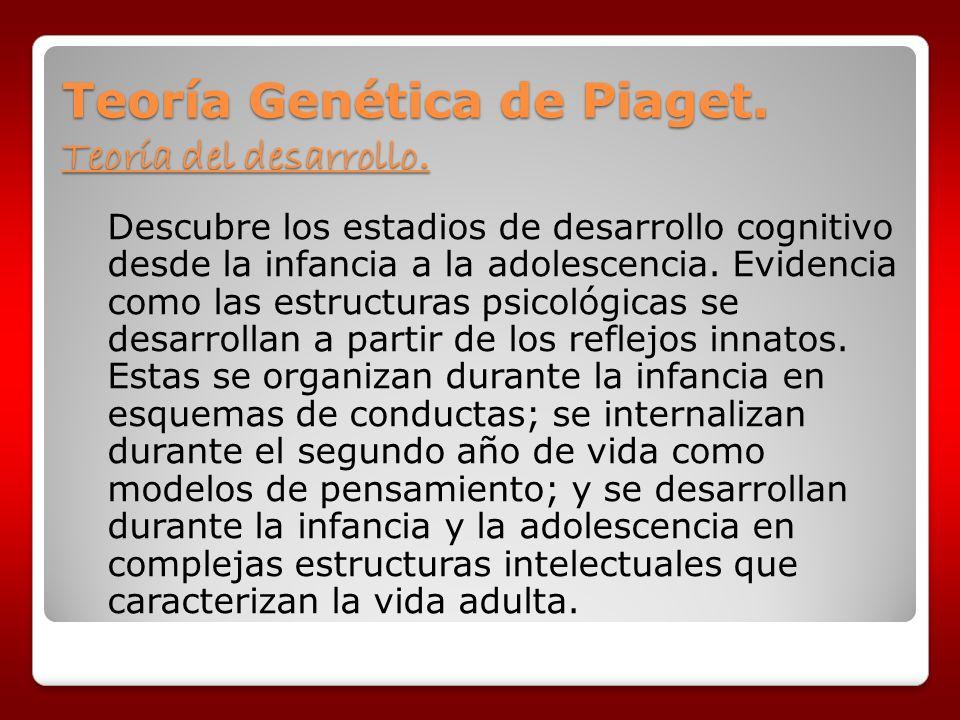 Teoría Genética de Piaget. Teoría del desarrollo. Descubre los estadios de desarrollo cognitivo desde la infancia a la adolescencia. Evidencia como la