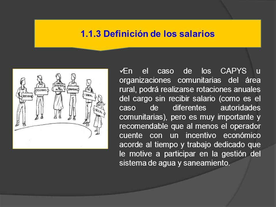 En el caso de los CAPYS u organizaciones comunitarias del área rural, podrá realizarse rotaciones anuales del cargo sin recibir salario (como es el ca