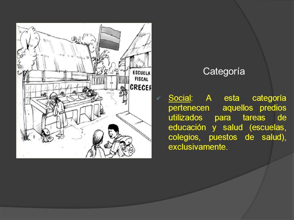Categoría Social: A esta categoría pertenecen aquellos predios utilizados para tareas de educación y salud (escuelas, colegios, puestos de salud), exc