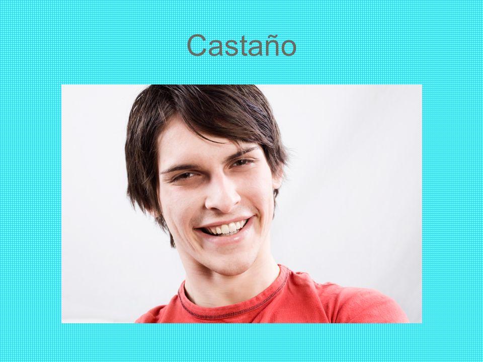 Castaño