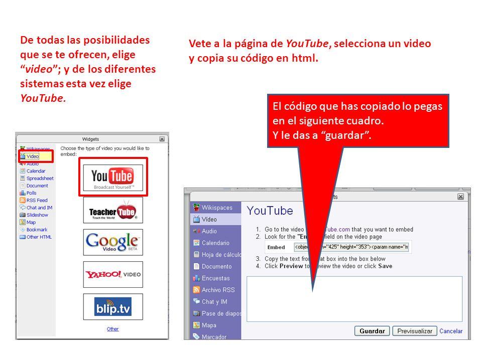 De todas las posibilidades que se te ofrecen, eligevideo; y de los diferentes sistemas esta vez elige YouTube.
