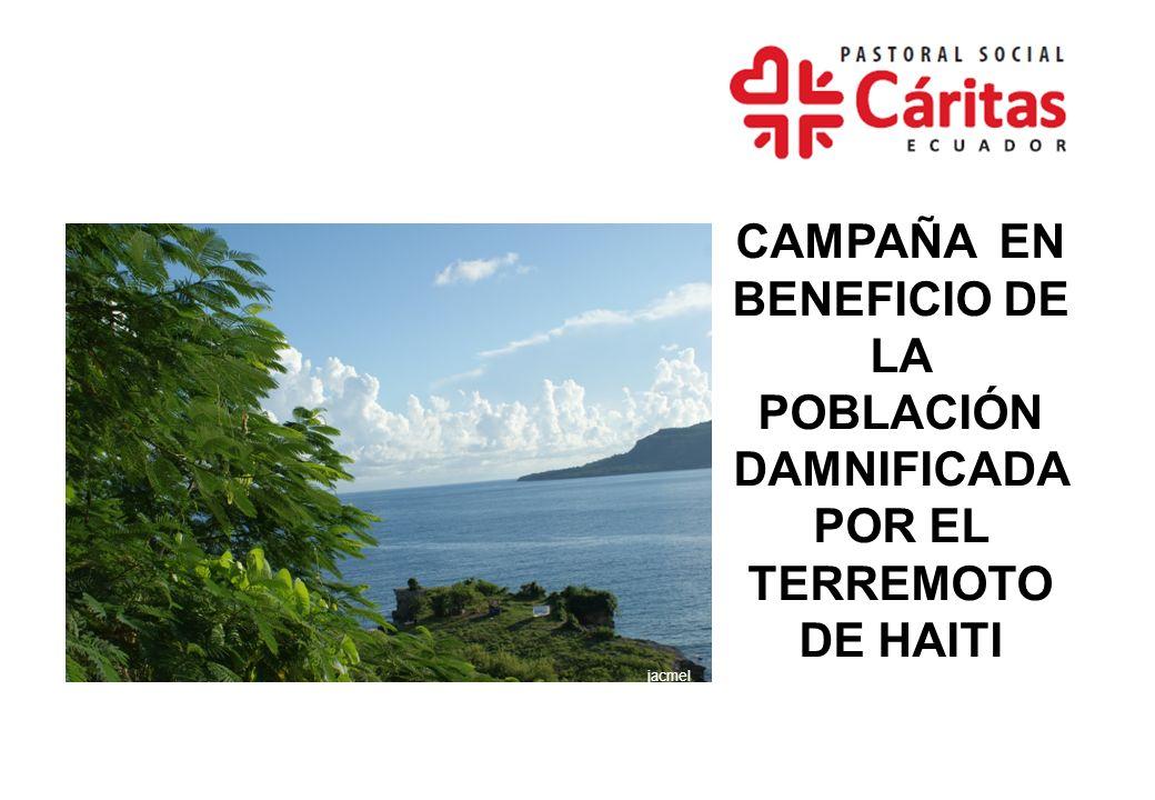 ANTECEDENTES El 12 de enero de 2010 se produjo en Haití un terremoto de 7,0 grados en la escala Richter.