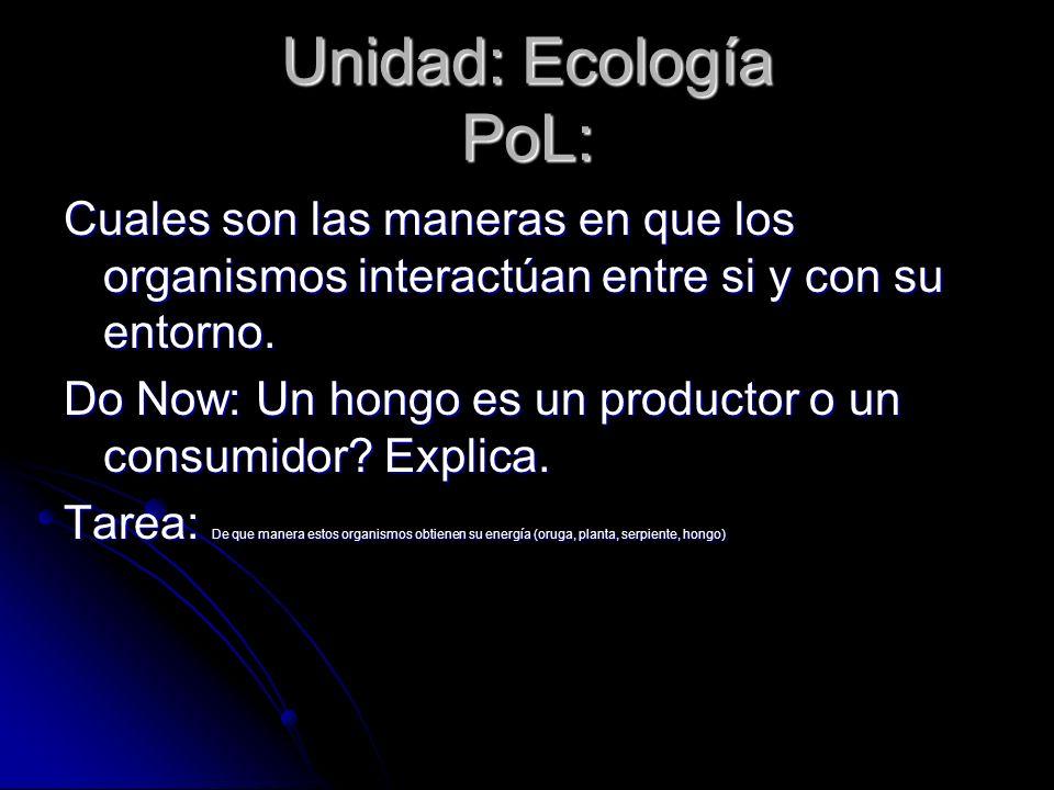 Unidad: Ecología PoL: Cuales son las maneras en que los organismos interactúan entre si y con su entorno. Do Now: Un hongo es un productor o un consum