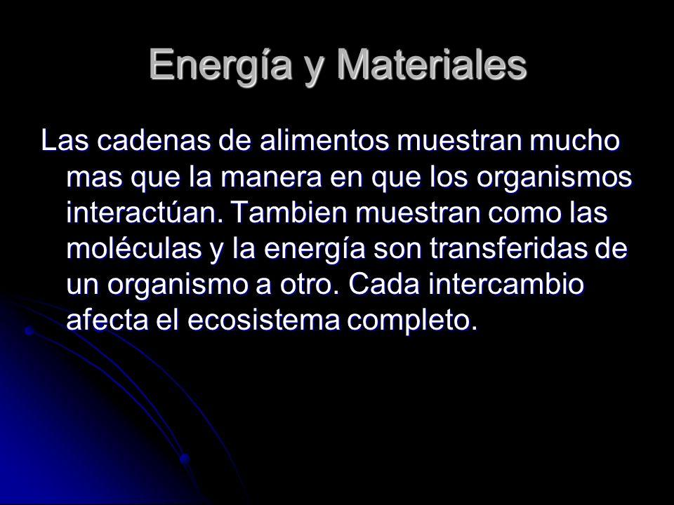 Energía y Materiales Las cadenas de alimentos muestran mucho mas que la manera en que los organismos interactúan. Tambien muestran como las moléculas