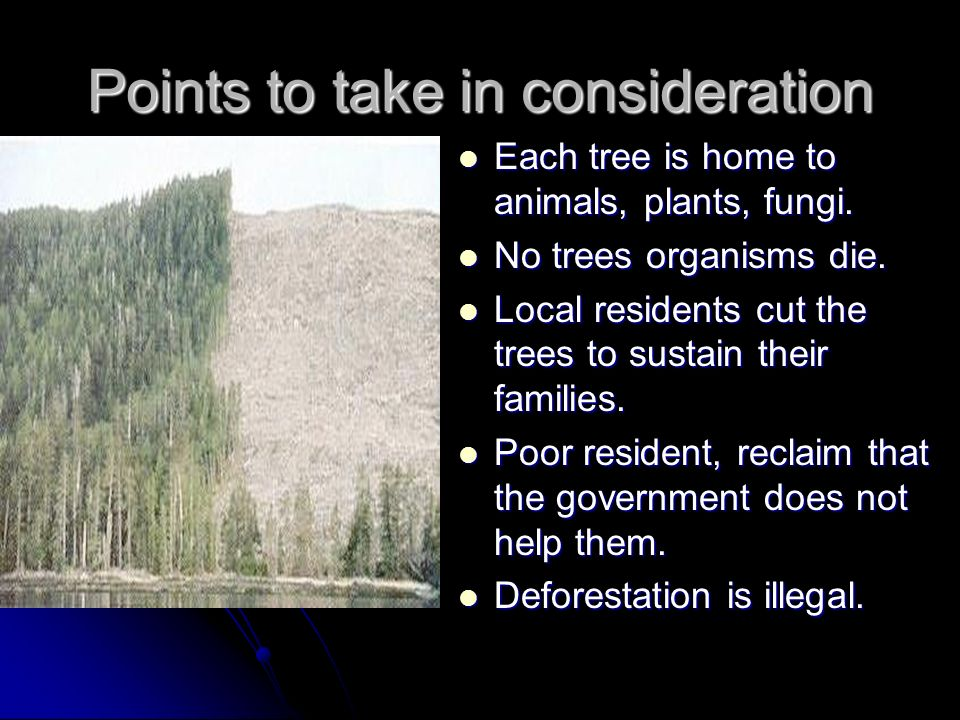Points to take in consideration Each tree is home to animals, plants, fungi. Each tree is home to animals, plants, fungi. No trees organisms die. No t
