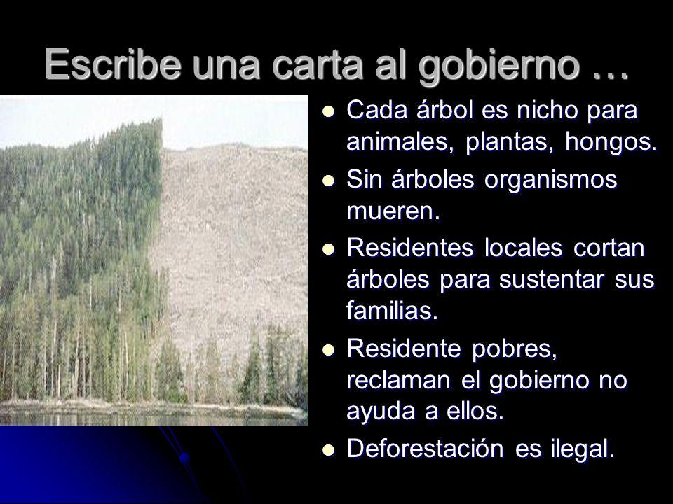 Cada árbol es nicho para animales, plantas, hongos. Cada árbol es nicho para animales, plantas, hongos. Sin árboles organismos mueren. Sin árboles org