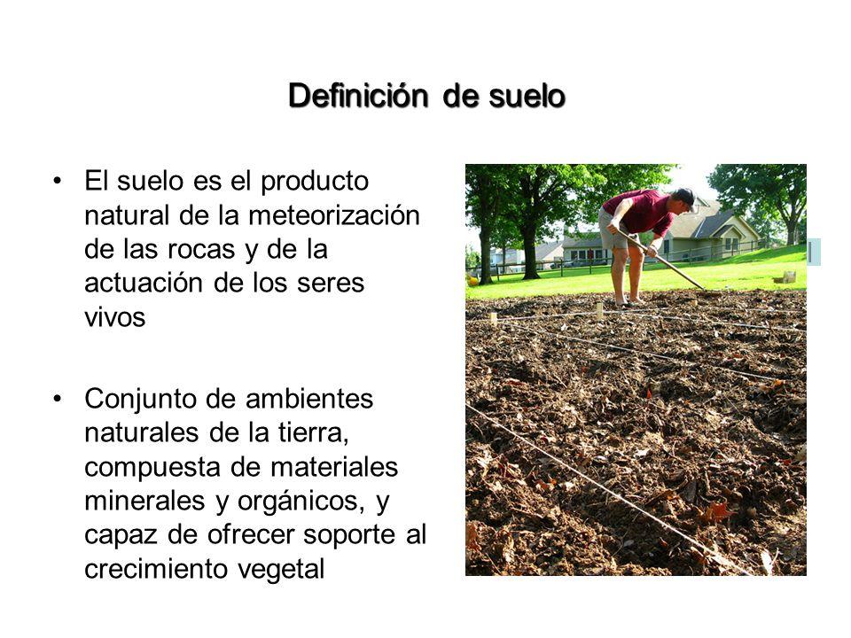 Definición de suelo El suelo es el producto natural de la meteorización de las rocas y de la actuación de los seres vivos Conjunto de ambientes natura