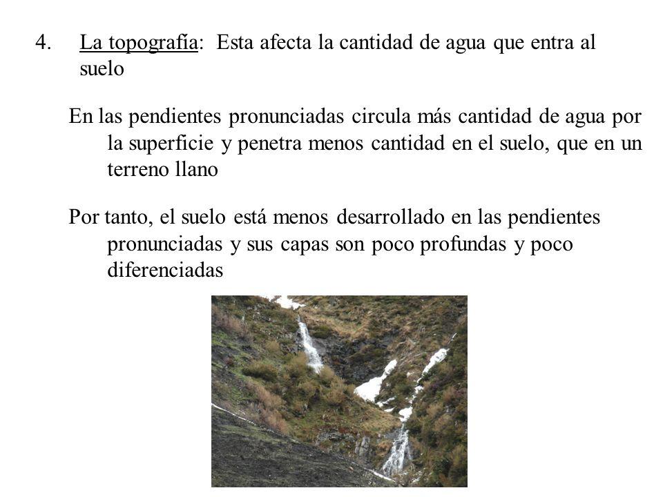 4.La topografía: Esta afecta la cantidad de agua que entra al suelo En las pendientes pronunciadas circula más cantidad de agua por la superficie y pe