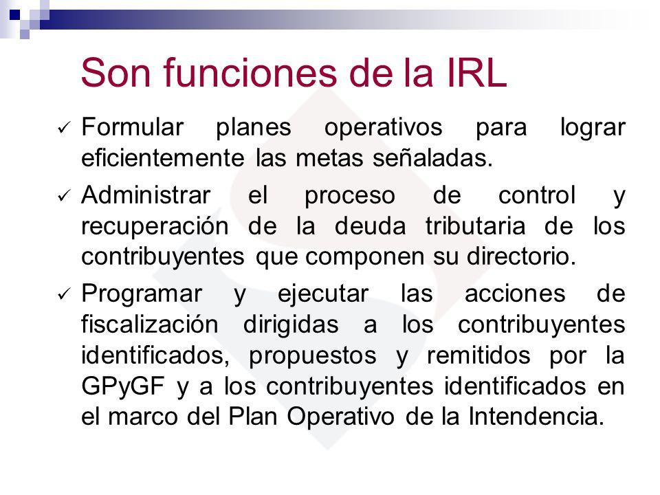 Son funciones de la IRL Formular planes operativos para lograr eficientemente las metas señaladas. Administrar el proceso de control y recuperación de