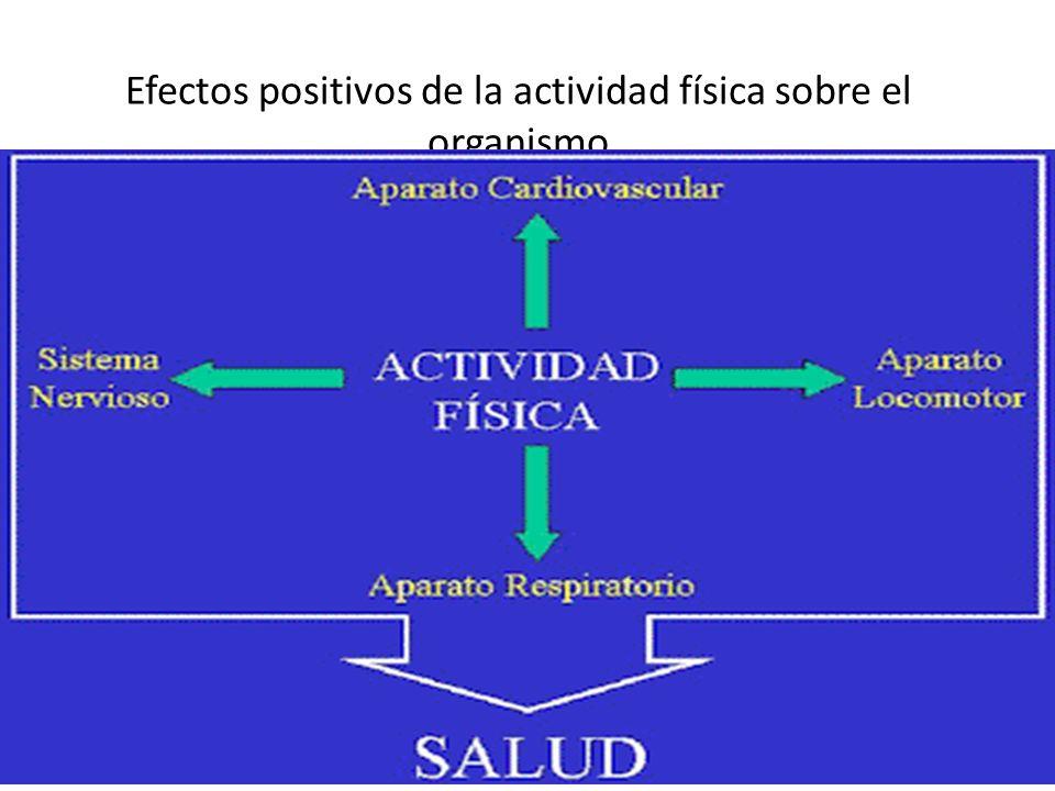La práctica de actividad física tiene una serie de beneficios sobre este sistema, que van desde un progreso en aspectos coordinativos, hasta la posibilidad de disminución de los niveles de ansiedad y agresividad, pasando por la mejora del descanso y el sueño.