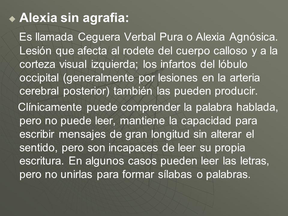 Alexia sin agrafia: Es llamada Ceguera Verbal Pura o Alexia Agnósica. Lesión que afecta al rodete del cuerpo calloso y a la corteza visual izquierda;