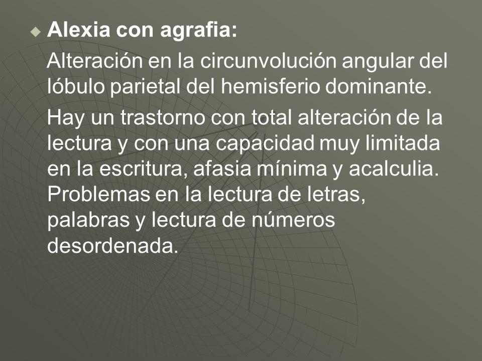 Alexia con agrafia: Alteración en la circunvolución angular del lóbulo parietal del hemisferio dominante. Hay un trastorno con total alteración de la