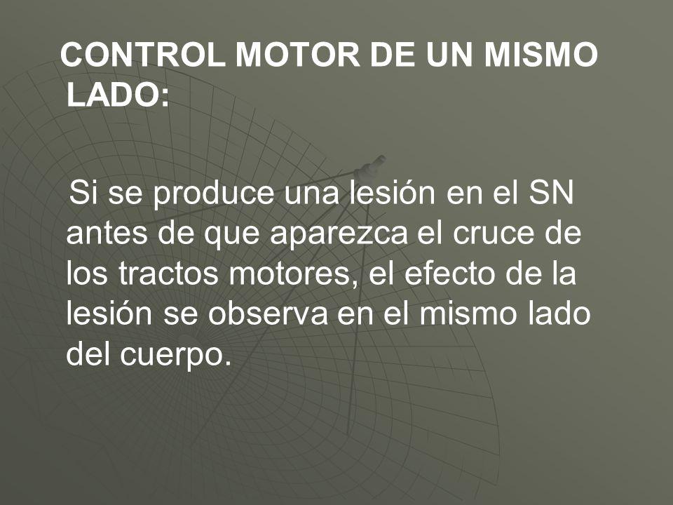 CONTROL MOTOR DE UN MISMO LADO: Si se produce una lesión en el SN antes de que aparezca el cruce de los tractos motores, el efecto de la lesión se obs