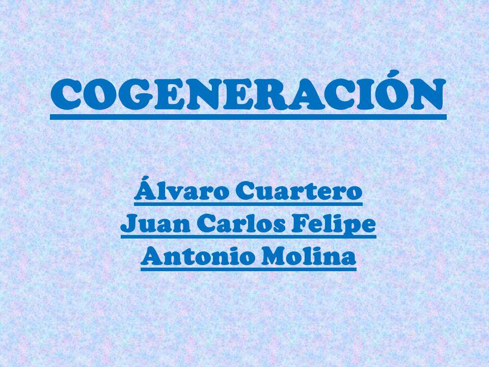 COGENERACIÓN Álvaro Cuartero Juan Carlos Felipe Antonio Molina