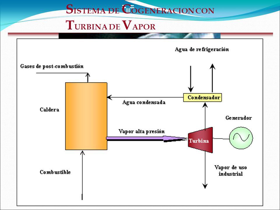 S ISTEMA DE C OGENERACION CON T URBINA DE V APOR