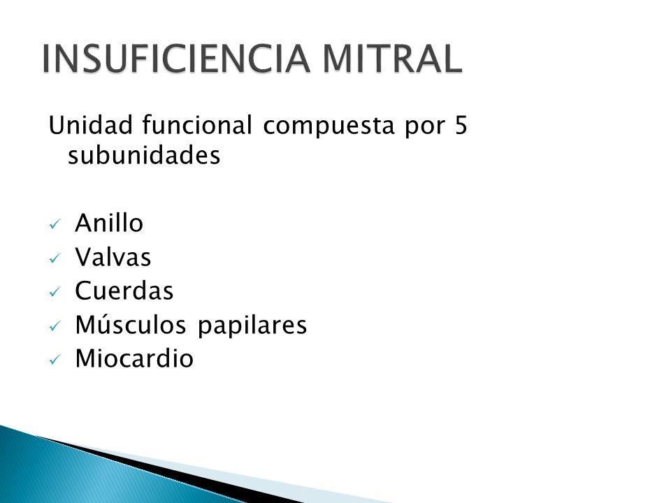 Unidad funcional compuesta por 5 subunidades Anillo Valvas Cuerdas Músculos papilares Miocardio