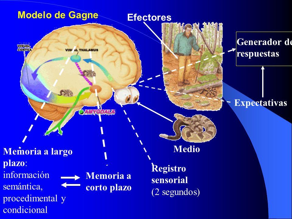 Modelo de Gagne Medio Registro sensorial (2 segundos) Memoria a corto plazo Memoria a largo plazo: información semántica, procedimental y condicional