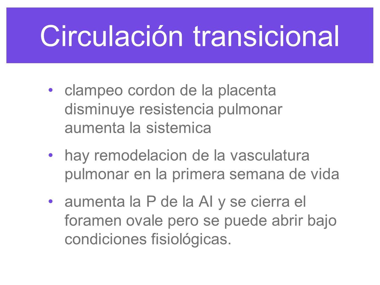Circulación transicional el ductus arterioso se cierra al retirar la placenta y por la de PG´s y el de la tensión de O2.