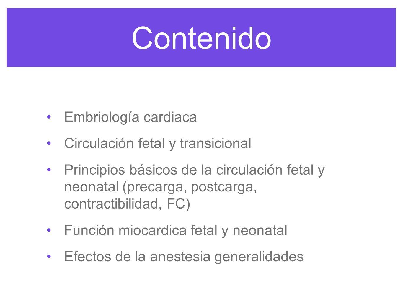 Embriología Anesthesia congenital heart disease