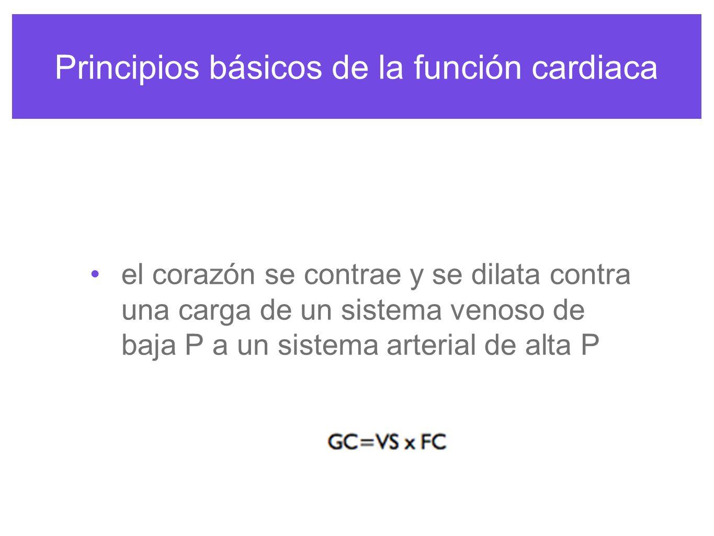 Principios básicos de la función cardiaca PRECARGA La T de la fibra varia según el nivel de estrechamiento que se aplique a la fibra antes del estimulo, el estrechamiento inicial es la precarga.