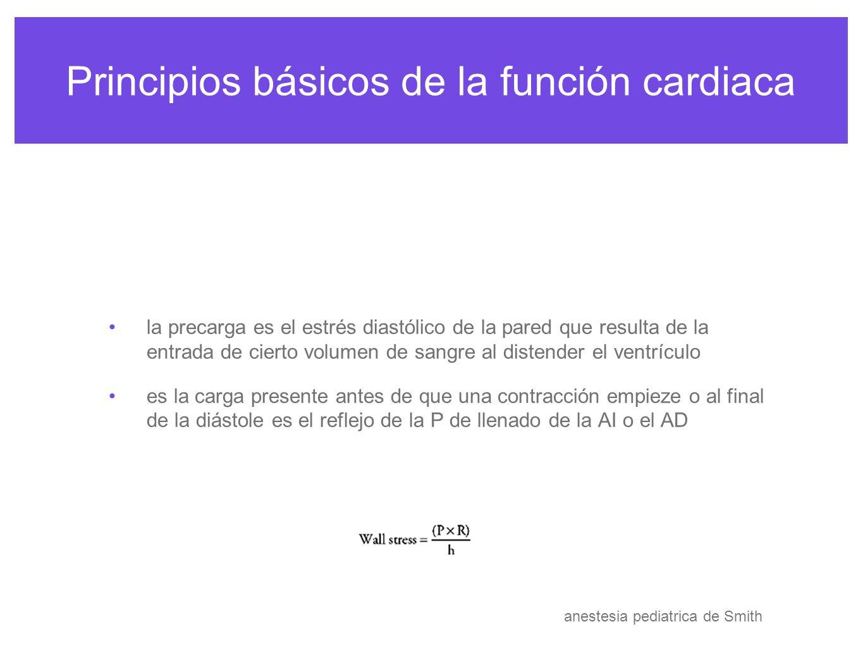 Principios básicos de la función cardiaca anestesia pediatrica de Smith