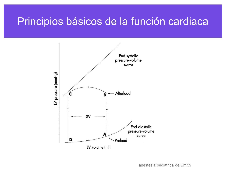 Principios básicos de la función cardiaca si la precarga se el volumen de eyección si la contractibilidad y postcarga se mantienen Kte si la postcarga se el volumen de eyección si la contractibilidad y postcarga se mantienen Kte anestesia pediatrica de Smith