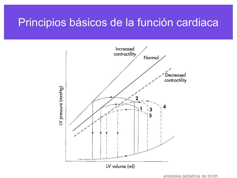 Principios básicos de la función cardiaca FRECUENCIA CARDIACA Afecta precarga t de llenado afecta percusión subendocardica perfusión del miocardio en diástole critica en ejercicio por demanda met