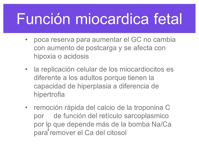 Función miocardica fetal La fuente de energía miocardica del feto es el lactato a diferencia del adulto que son los ácidos grasos, por deficiencia de la enzima carnitina palmitoil transferasa-1 que transporta AGL a la mitocondria