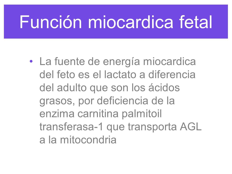 Función miocardica fetal SV en RN aumenta porque se disminuye la compresión de los tejidos circundantes por perfusión y salida de liquido de los pulmones.