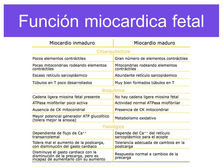 función miocardica anesthesia congenital heart disease