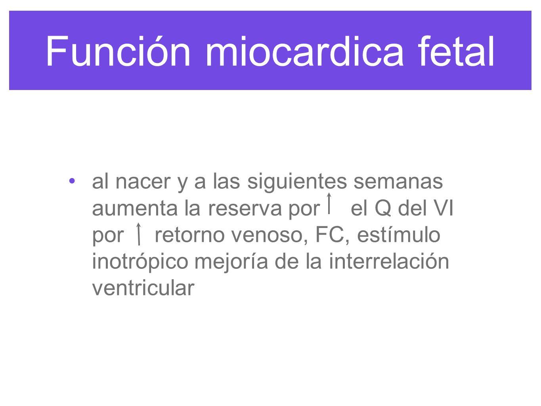 Función miocardica fetal Los potenciales de reposo de la membrana son > que el adulto la permeabilidad al potasio por eso la duración del potencial de acción es > y la conducción atrioventricular es > rápida