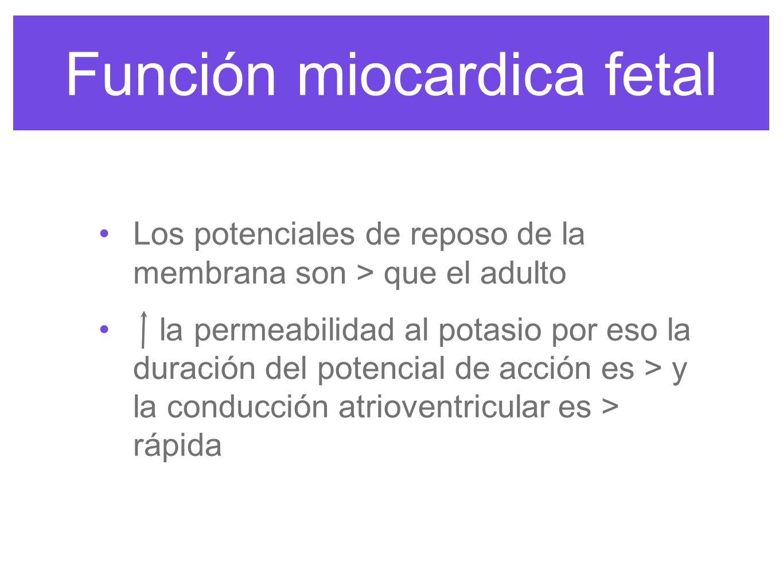 Función miocardica fetal los reflejos barorreceptores y quimiorreceptores están presentes y después de nacer el tono simpático basal por eso la PA la FC a los 2 meses primeros de vida por < neurotransmisores