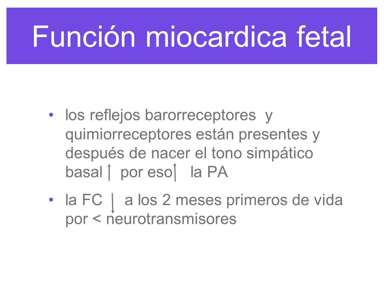 Función miocardica fetal feto FC y PA mientras que neonato la FC la PA las diferencias en FC a los 6 meses desaparecen en pretérminos y a término y no hay tanta variabilidad