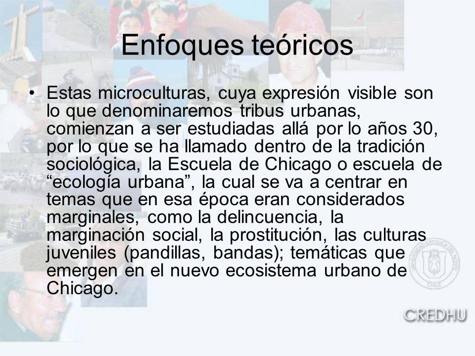 Enfoques teóricos Estas microculturas, cuya expresión visible son lo que denominaremos tribus urbanas, comienzan a ser estudiadas allá por lo años 30,