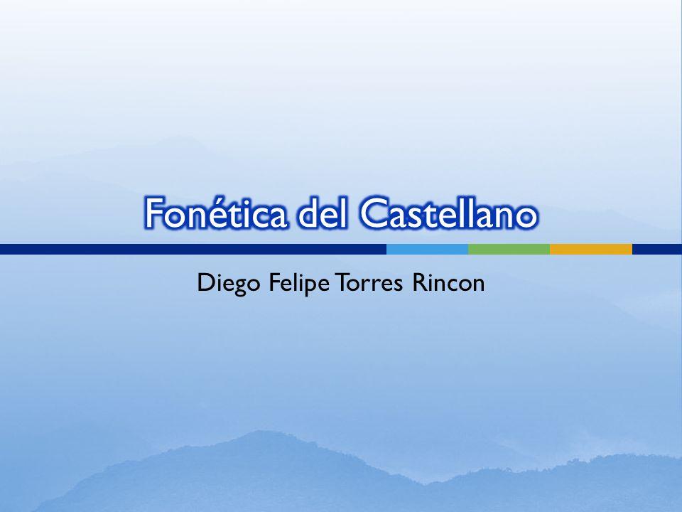 Diego Felipe Torres Rincon