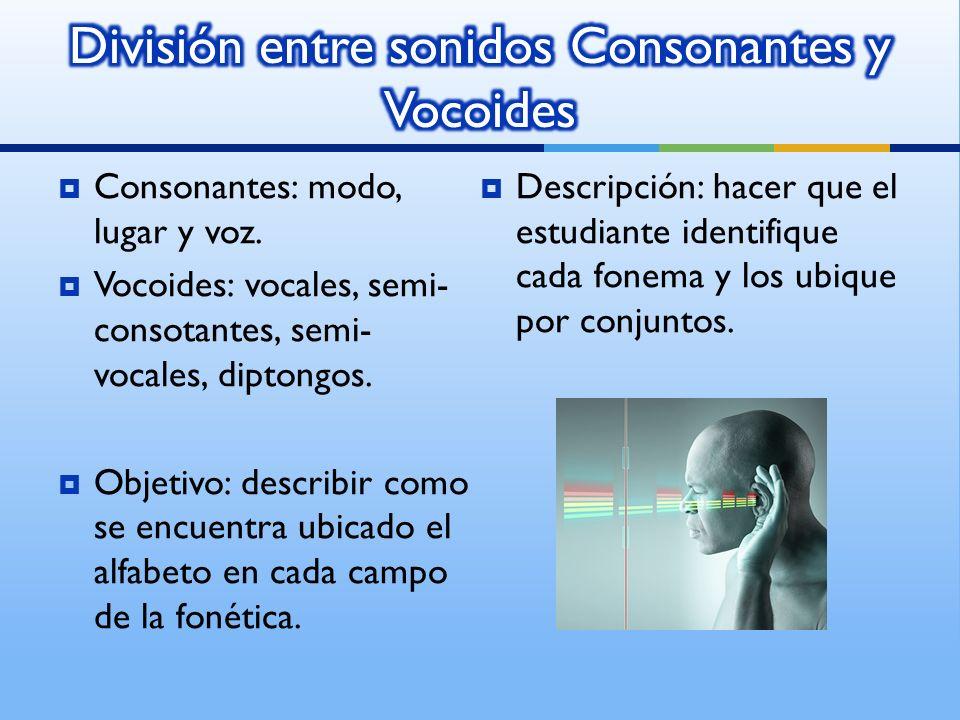 Consonantes: modo, lugar y voz. Vocoides: vocales, semi- consotantes, semi- vocales, diptongos.
