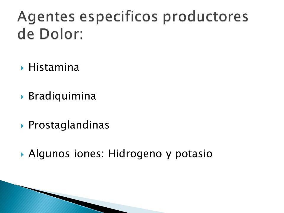 Histamina Bradiquimina Prostaglandinas Algunos iones: Hidrogeno y potasio