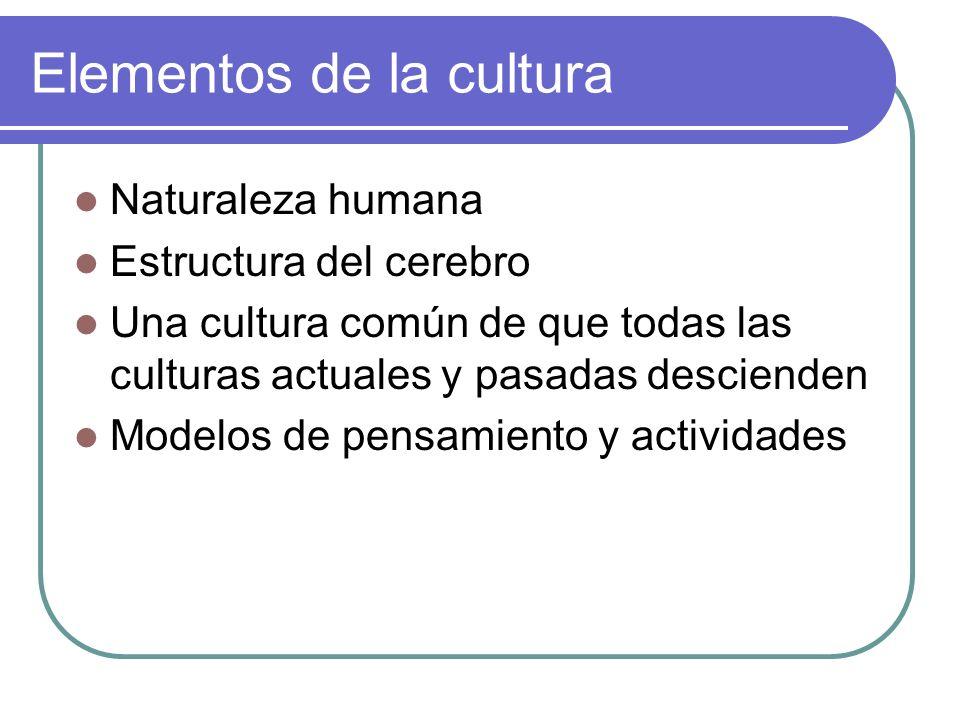 Elementos de la cultura Naturaleza humana Estructura del cerebro Una cultura común de que todas las culturas actuales y pasadas descienden Modelos de