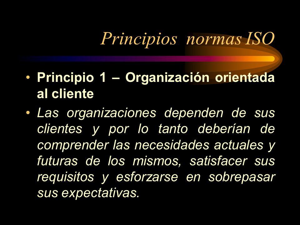 Principios normas ISO Principio 1 – Organización orientada al cliente Las organizaciones dependen de sus clientes y por lo tanto deberían de comprende
