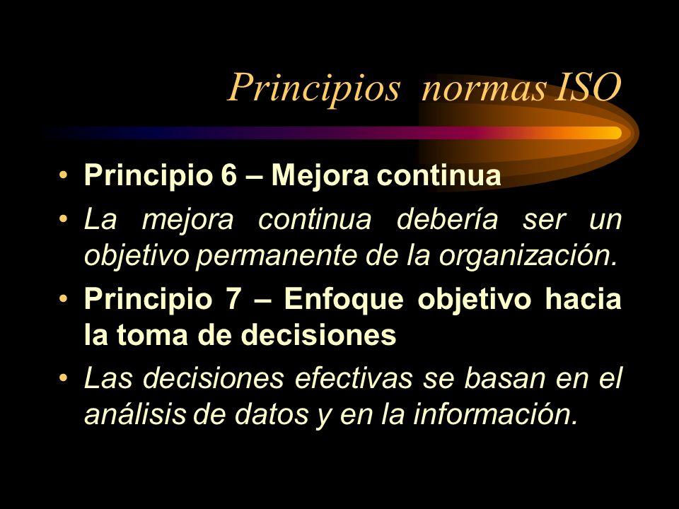 Principios normas ISO Principio 6 – Mejora continua La mejora continua debería ser un objetivo permanente de la organización. Principio 7 – Enfoque ob