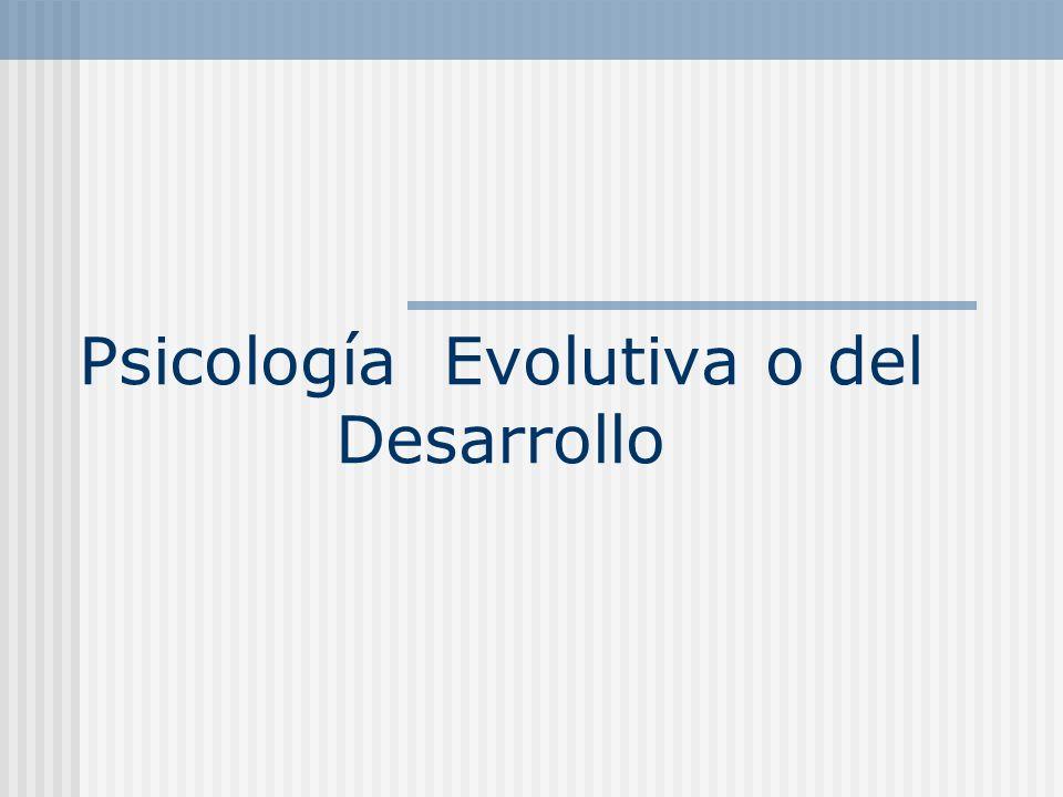 Grandes modelos evolutivos