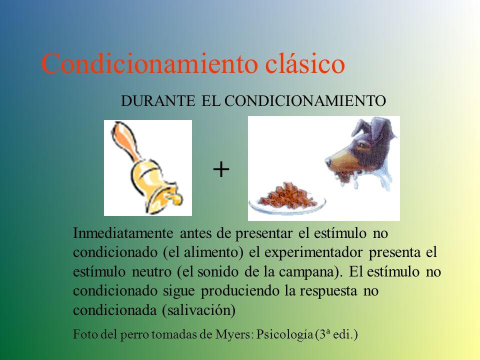 Condicionamiento Clásico Estímulo Neutro: Estímulo que, antes del condicionamiento, no tiene efecto sobre la respuesta que se desea obtener. Estímulo