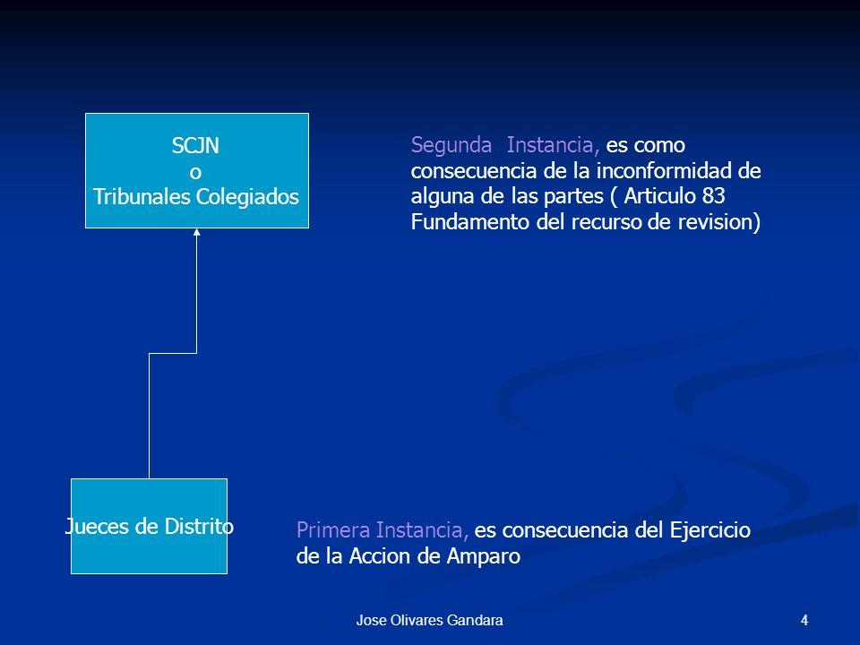 4Jose Olivares Gandara Jueces de Distrito SCJN o Tribunales Colegiados Primera Instancia, es consecuencia del Ejercicio de la Accion de Amparo Segunda