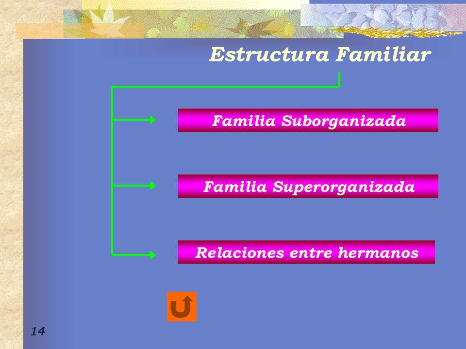 14 Familia Suborganizada Relaciones entre hermanos Familia Superorganizada Estructura Familiar