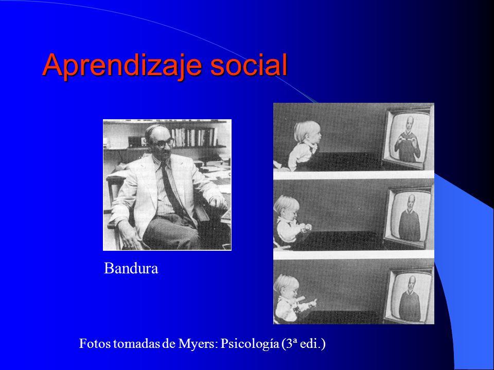 Aprendizaje social Bandura Fotos tomadas de Myers: Psicología (3ª edi.)